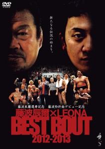 藤波辰爾×LEONA BEST BOUT 2012-2013